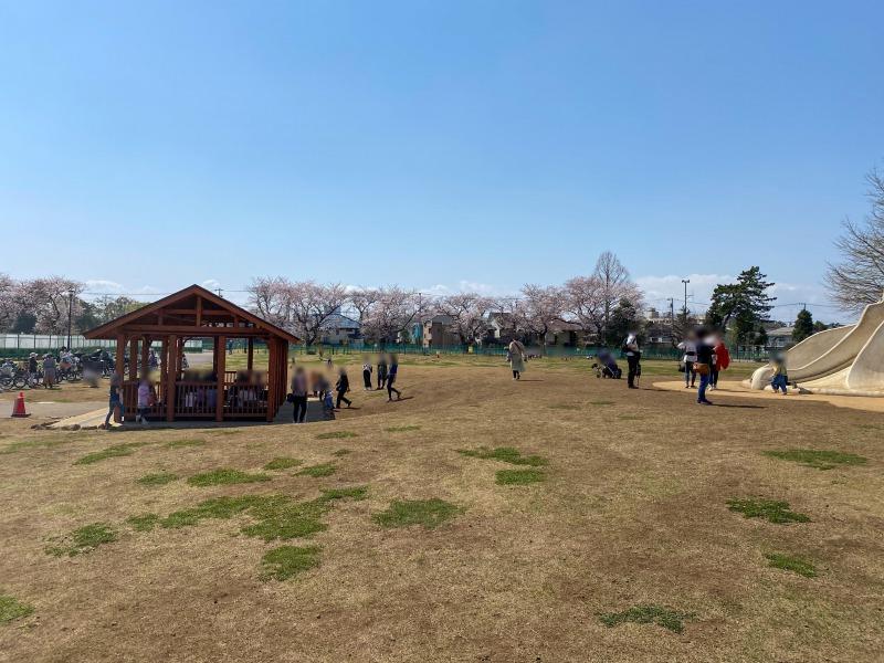 高井戸公園の遊具広場1