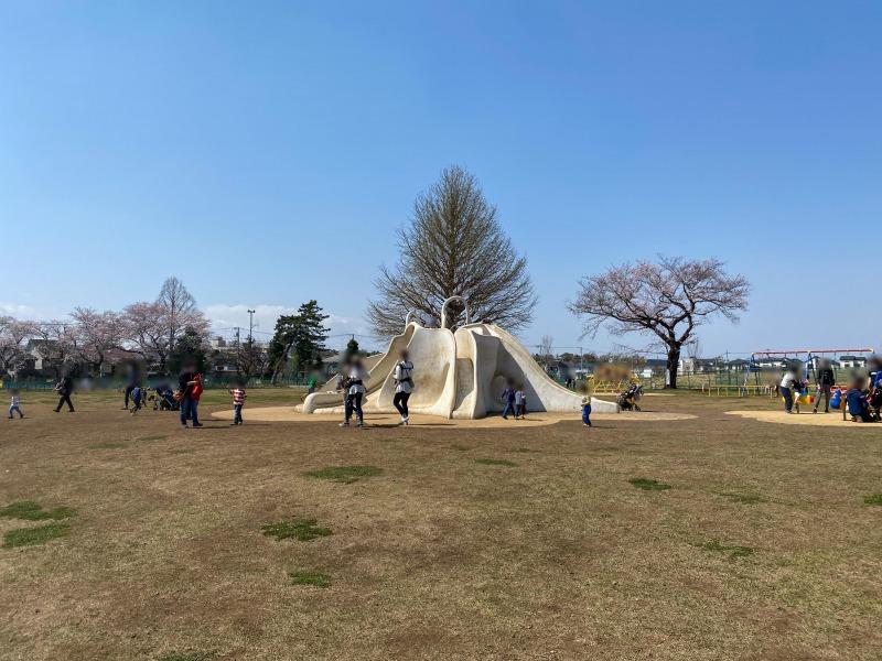 高井戸公園の遊具広場2